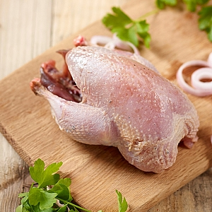 PARTRIDGE WHOLE (sold individually)