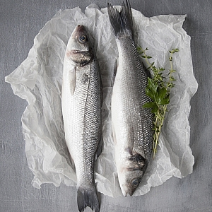 FRESH SEA BASS, & FILLETS